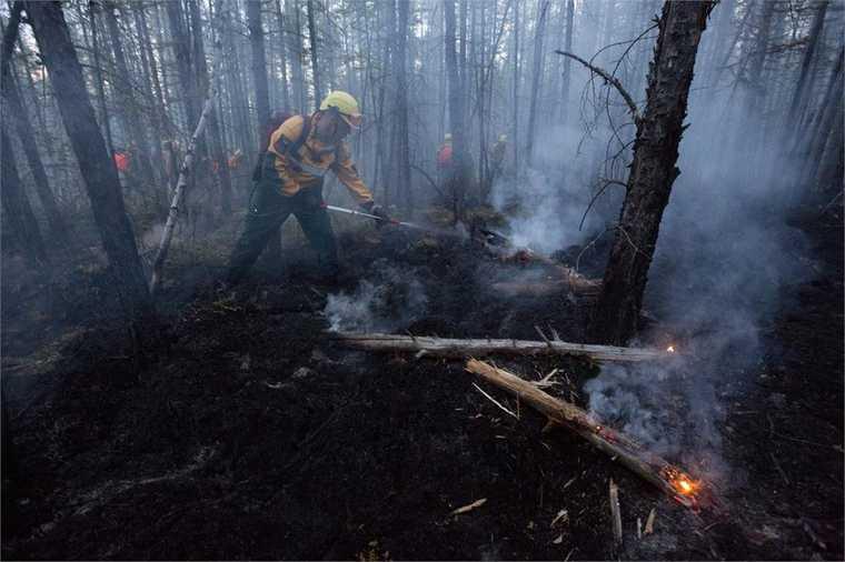 Открытая лицензия на 29.07.2015. Лесной пожар