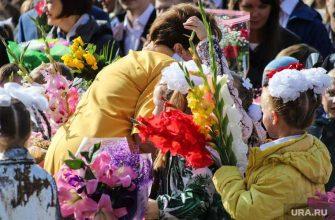 Коронавирус гумерова школы дистант учебный год совет федерации совфед