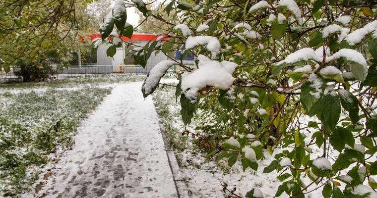 В Курган идут первые осенние заморозки